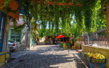 Χρώματα, αρώματα και παραδόσεις στη γραφική Αγιάσο της Λέσβου