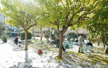 Δροσερές γωνιές στην Αθήνα για να απολαύσετε τον καφέ σας