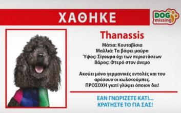 Ευρωεκλογές 2019: Χάθηκε ο «Thanassis» των ΑΝΕΛ, αν τον βρείτε κρατήστε τον