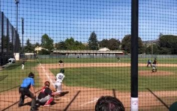 Το μπαλάκι του μπέιζμπολ χτύπησε ένα… περιστέρι