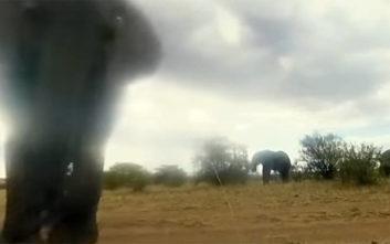 Ένας ελέφαντας πήρε χαμπάρι μια κρυφή κάμερα και εκνευρίστηκε πολύ