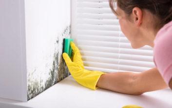 Πώς να αντιμετωπίσετε τη μούχλα στους τοίχους