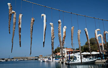 Πολιτιστικές, γαστρονομικές και αθλητικές εκδηλώσεις που ενισχύουν την εικόνα της Ελλάδας