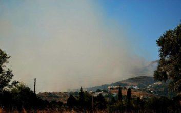 Νύχτα αγωνίας στην Κάρυστο: Χωρίς ενεργό μέτωπο η φωτιά, εκκενώθηκαν κατοικίες
