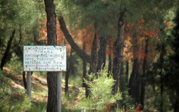Απαγόρευση κυκλοφορίας σε Σέιχ Σου, Κασσάνδρα και Σιθωνία, λόγω πολύ υψηλού κινδύνου εκδήλωσης πυρκαγιάς