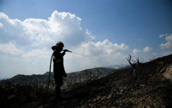 Ζάκυνθος: Σε ύφεση η φωτιά που ξέσπασε σε δασική έκταση στα Λαγκαδάκια