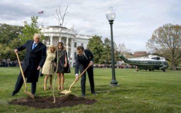 «Πέθανε» το δέντρο φιλίας που φύτεψαν Τραμπ και Μακρόν