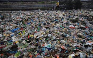 Οι «κοινότητες» από σκουπίδια που έχουν ξεπηδήσει σε Μεσόγειο και Ινδία