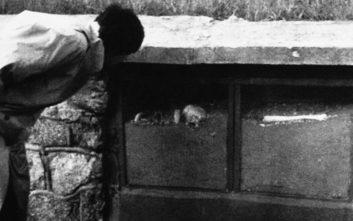Πέθανε ο τελευταίος γνωστός επιζών του ναζιστικού στρατοπέδου εξόντωσης Σομπιμπόρ