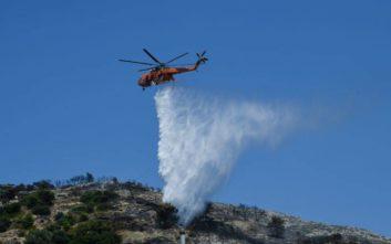 Συναγερμός στην Πυροσβεστική για τέσσερις φωτιές στη Φθιώτιδα