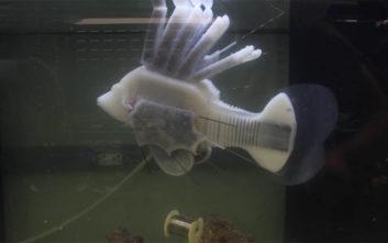 Έφτιαξαν ρομποτικό ψάρι που κινείται με συνθετικό αίμα