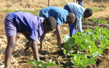Παγκόσμια ημέρα κατά της παιδικής εργασίας: Σοκάρουν οι αριθμοί