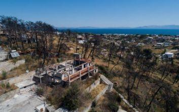 Μάτι: Από τα 2.000 σπίτια τα 400 είναι σε αναδασωτέες περιοχές
