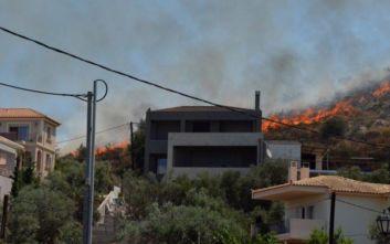 Φωτιά στο Ναύπλιο: «Πλησίασε κάποια σπίτια»