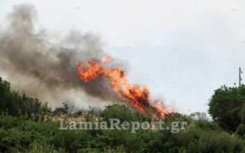 Φωτιά στη Δίβρη Φθιώτιδας: Φωτορεπορτάζ από τις φλόγες να περνούν δίπλα από τα σπίτια