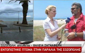 Φονική κακοκαιρία στη Χαλκιδική: Βρέθηκε σορός σε παραλία