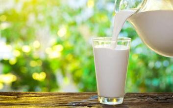 Αίτημα Χαρακόπουλου για επαναφορά του φρέσκου γάλακτος στις πέντε ημέρες