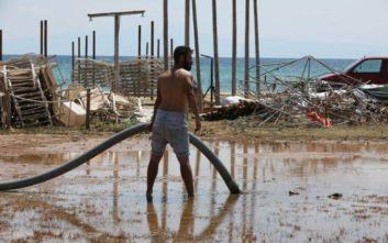 Φονική κακοκαιρία στη Χαλκιδική: 378.500 στρέμματα καταστράφηκαν από τη θεομηνία