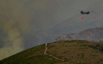 Στο «πόδι» η Πυροσβεστική: Φωτιά και στη Μάνη