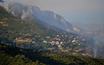 Φωτιά στην Εύβοια: Μία σύλληψη για εμπρησμό, μαίνονται τα πύρινα μέτωπα