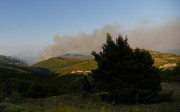 Φωτιά στην Εύβοια: Εμπρησμό βλέπει ο δήμαρχος Κύμης - Αλιβερίου