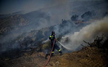 Πολύ υψηλός και αύριο ο κίνδυνος πυρκαγιάς
