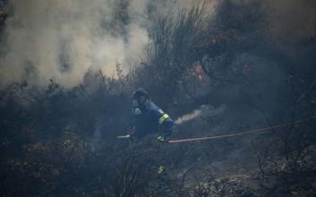 Νέος συναγερμός στην Πυροσβεστική από φωτιά στους Αγίους Θεοδώρους
