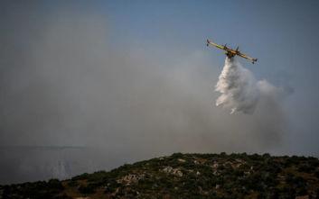 Φωτιά στην Ανατολική Μάνη, «στο πόδι» η Πυροσβεστική