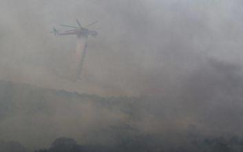 Φωτιά στην Εύβοια: Μάχη όλη τη νύχτα με τις φλόγες