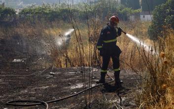 Σε ύφεση οι φωτιές που εκδηλώθηκαν στην Αχαΐα