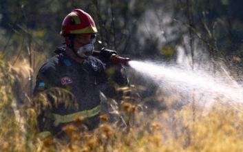 Φωτιές σε Εύβοια, Άρτα και Ιωάννινα