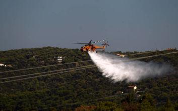 Πυρκαγιά σε τέσσερα μέτωπα μεταξύ Αμφίκλειας και Τιθορέας
