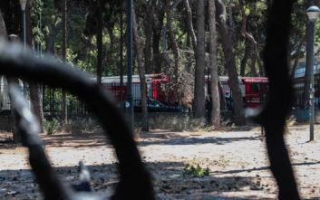 Ακραίος κίνδυνος πυρκαγιών το τριήμερο