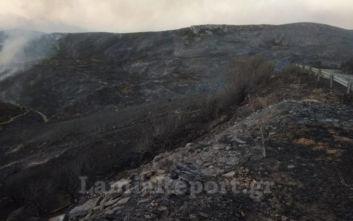 Φωτιά στην Εύβοια: Εικόνες καταστροφής από τις πυρκαγιές