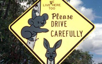 Τέσσερα παιδιά έκαναν ταξίδι 1.000 μιλίων στην Αυστραλία με κλεμμένο τζιπ