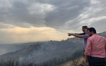 Φωτιά στη Δίρβη Φθιώτιδας: Στο χωριό ο Κώστας Μπακογιάννης