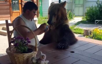 Τα ζώα του Ιουνίου που έγιναν viral