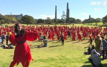 Flashmobs από το Βερολίνο έως το Σίδνεϊ για την Κέιτ Μπους