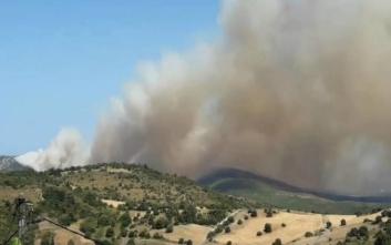 Φωτιά στην Εύβοια: Εκκενώνεται το Μακρυχώρι στον δήμο Κύμης