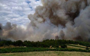 Μεγάλη φωτιά στην Τανάγρα: Ισχυρές δυνάμεις της Πυροσβεστικής προσπαθούν να την θέσουν υπό έλεγχο