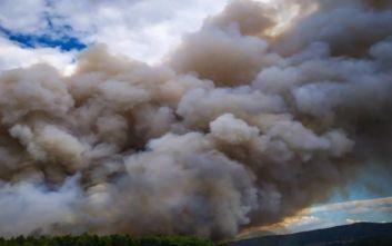 Κατακαίει τα πάντα στο πέρασμα της η φωτιά στην Τανάγρα