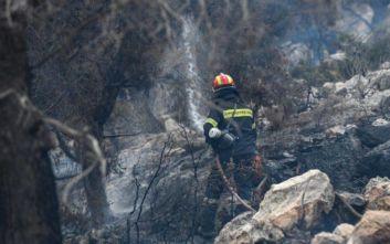 ΣΥΡΙΖΑ: Αδικαιολόγητος ο αποκλεισμός της Ηπείρου από τον διαγωνισμό για πρόσληψη εποχικών πυροσβεστών