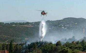 Δήμαρχος Ραφήνας για τη φωτιά: Το προλάβαμε