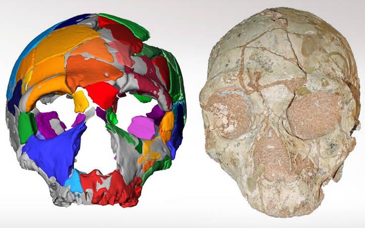 Το αρχαιότερο δείγμα Homo Sapiens βρέθηκε στην Ελλάδα – Newsbeast