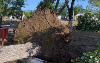 Καταστροφές, πτώσεις δέντρων και πλημμύρες σε Καβάλα και Ξάνθη