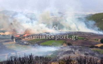 Φθιώτιδα: Φωτογραφίες και βίντεο από τη φωτιά που έφτασε στο χωριό Δίβρη
