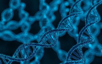 Η γενετική επιβεβαιώνει την αρχαιολογία για το εάν είχε ο Γολιάθ ελληνική καταγωγή