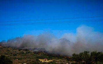 Ενισχύθηκαν και πάλι οι πυροσβεστικές δυνάμεις στην Ελαφόνησο