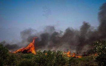 Σε ύφεση η πυρκαγιά στην Ελαφόνησο, 63 πυρκαγιές σε ένα 24ωρο