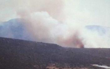 Ενισχύονται οι πυροσβεστικές δυνάμεις στον Μαραθώνα Αττικής